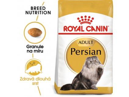 1 persian adult