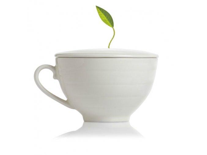Café Cup . Tea Forte®