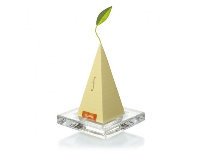Glass tea trays . Tea Forte®