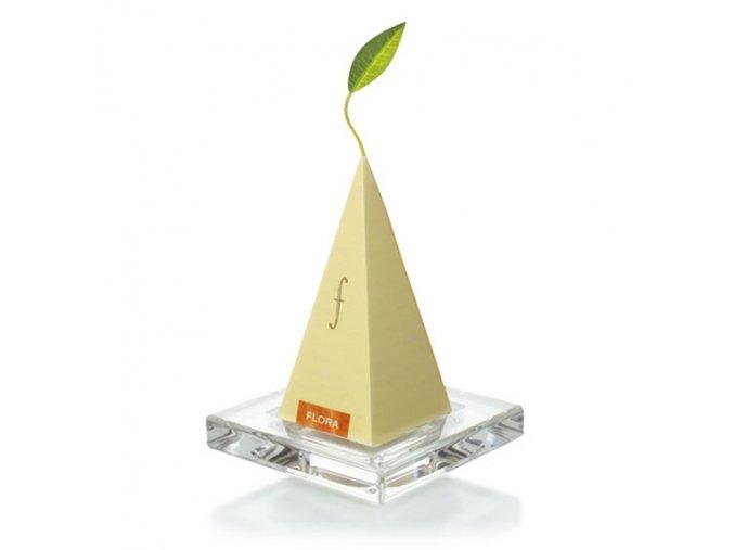 Glass tea trays . Tea Forte®