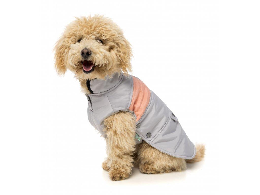 jacket mac 2 grey peach dog 11
