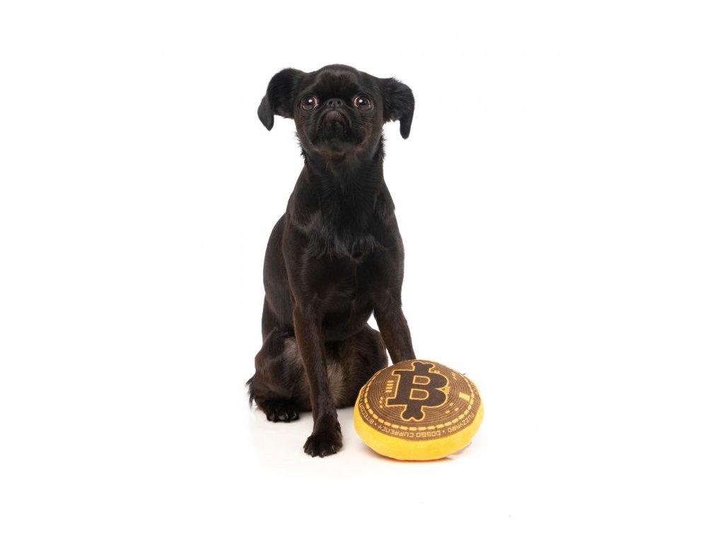FZT22 PlushToy BiteCoin Dog 1 570x706