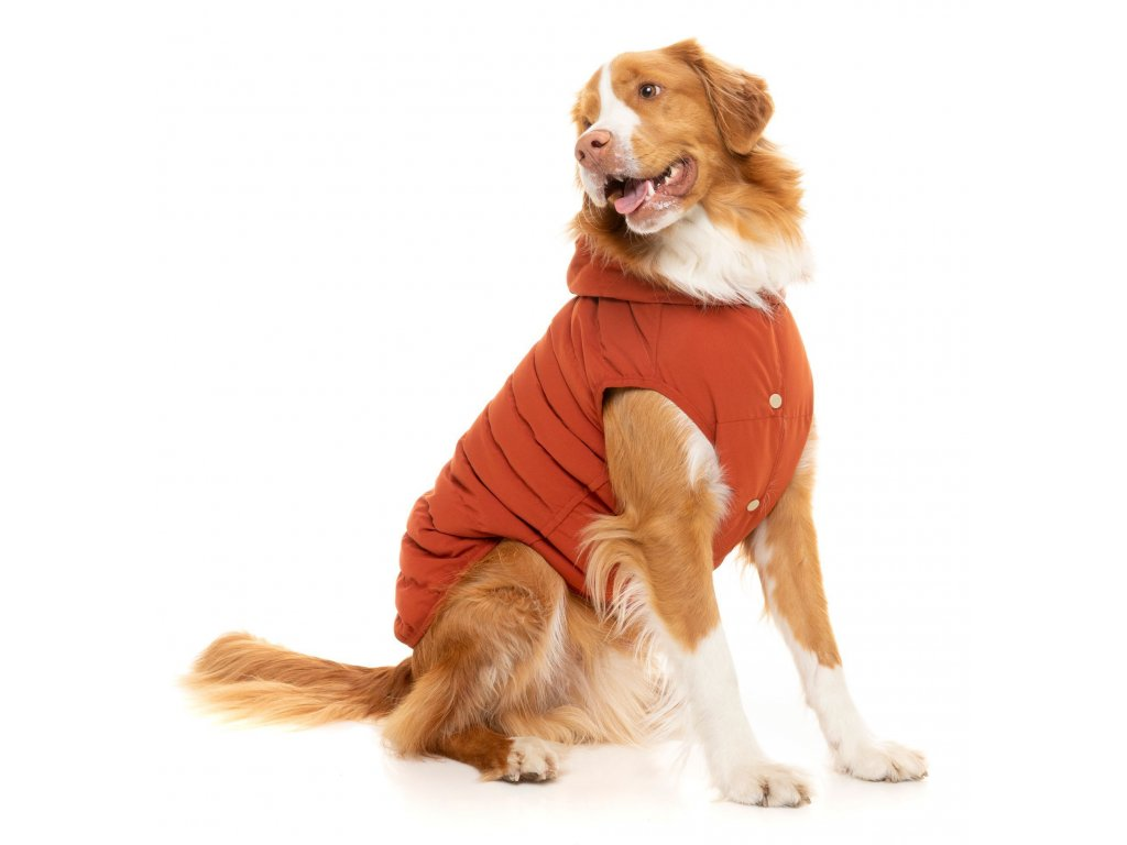 fzaw1071 7 jacket aspen burntochre dog 05 01593.1588738355