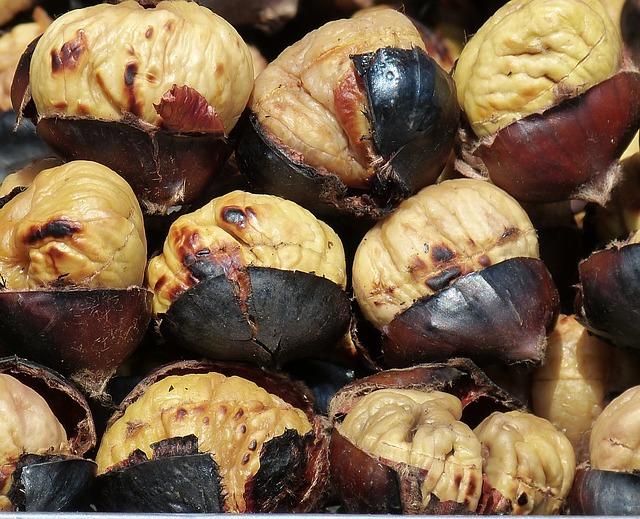chestnuts-789518_640