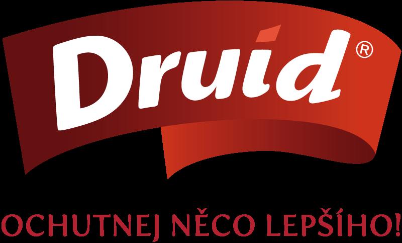 druid_logotyp_slogan_pod_logem