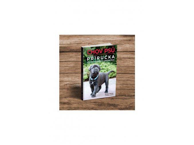 572 1 kniha psi 2