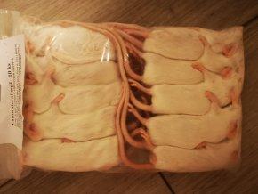 Laboratorní myši (v balení 10ks)