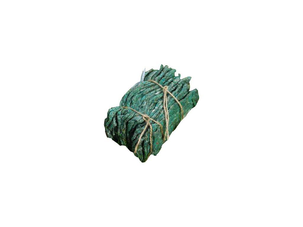 Typhlodromus pyri - proti roztočům