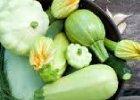 Tekvicová zelenina