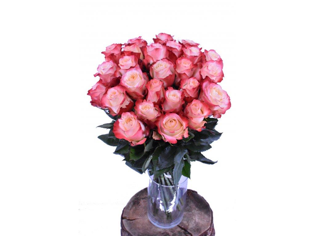 Kytice barevných Ecuadorských růží, 70cm