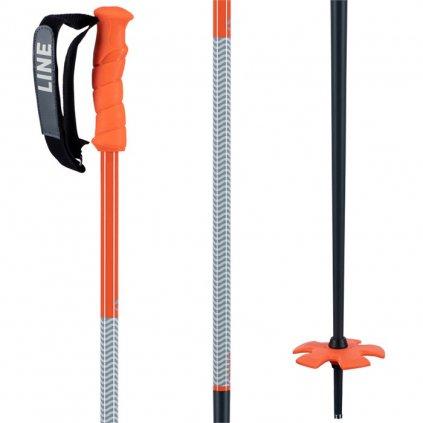 line skis grip stick ski poles 2021