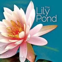 Lily Pound 1 CD - relaxační hudba GLOBAL JOURNEY
