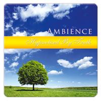 Hypnotized by Truth 1 CD - relaxační hudba GLOBAL JOURNEY