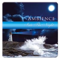 Into The Night 1 CD - relaxační hudba GLOBAL JOURNEY