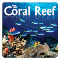 The Coral Reef 1 CD