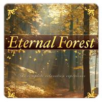 Eternal Forest 1 CD - relaxační hudba GLOBAL JOURNEY