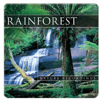 Rainforest 1 CD - relaxační hudba GLOBAL JOURNEY