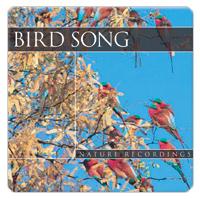 Bird Song 1 CD - ptačí zpěv GLOBAL JOURNEY