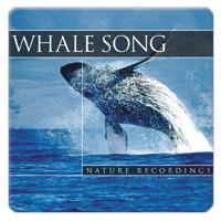 Whalesong 1 CD - relaxační hudba GLOBAL JOURNEY