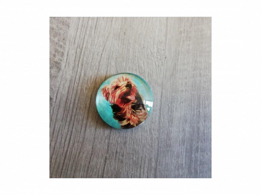 Magnet kulatý plemeno Jorkšírský teriér 3 x 3 cm