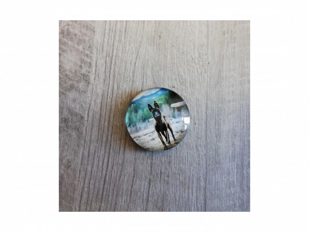 Magnet kulatý plemeno Malinois 3 x 3 cm