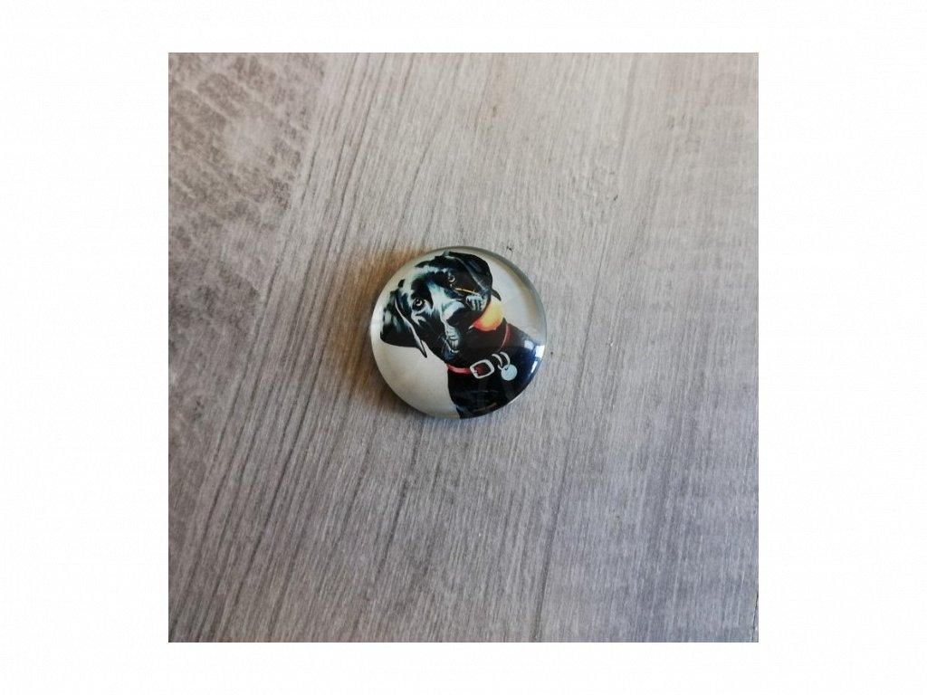 Magnet kulatý plemeno Labradorský retrívr černý 3 x 3 cm