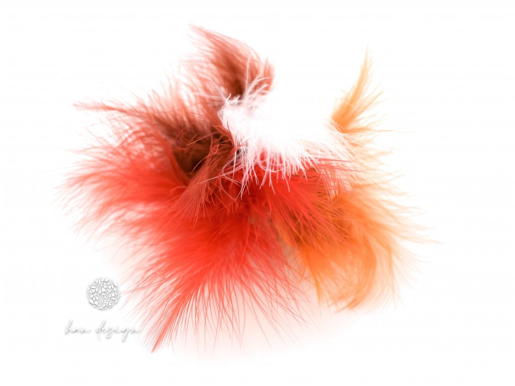 Peříčka na skřipci