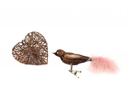 3017 ptak velky