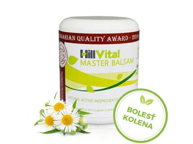 Master Balzam Krém na bolesť kolena od HillVitalu