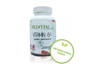 vitamin b5 metabolizmus tukov hillvital sk