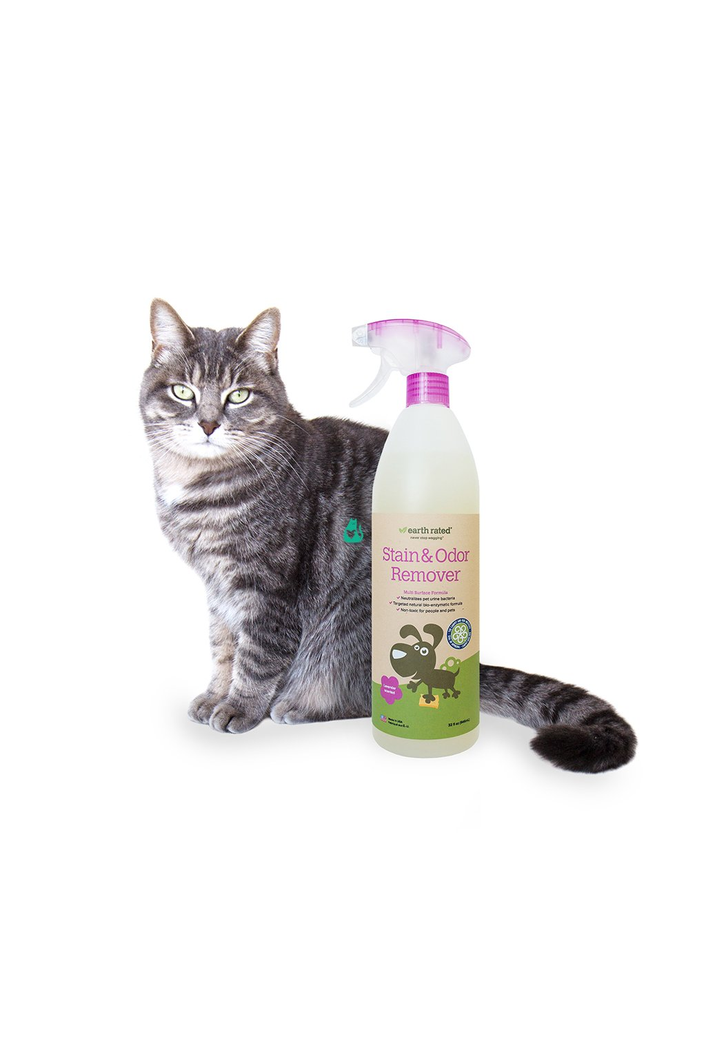 ERSTAIN32OZ Scented Bottle with Cat Web