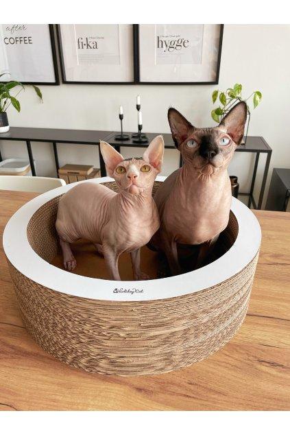 cat on ovaler katzenkorb lovale katzenschale 02 800x600px