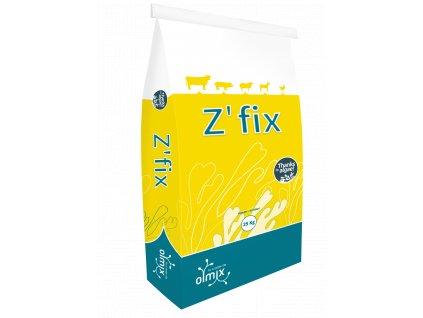 ZFIX bag 2020