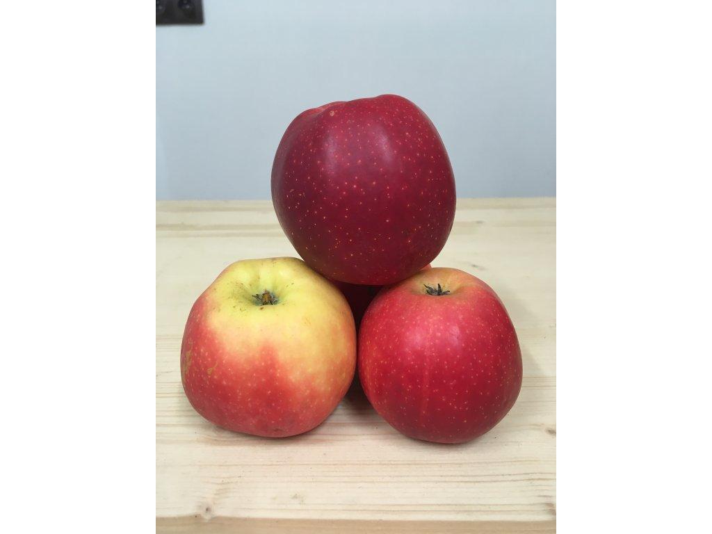 Jablka Gala