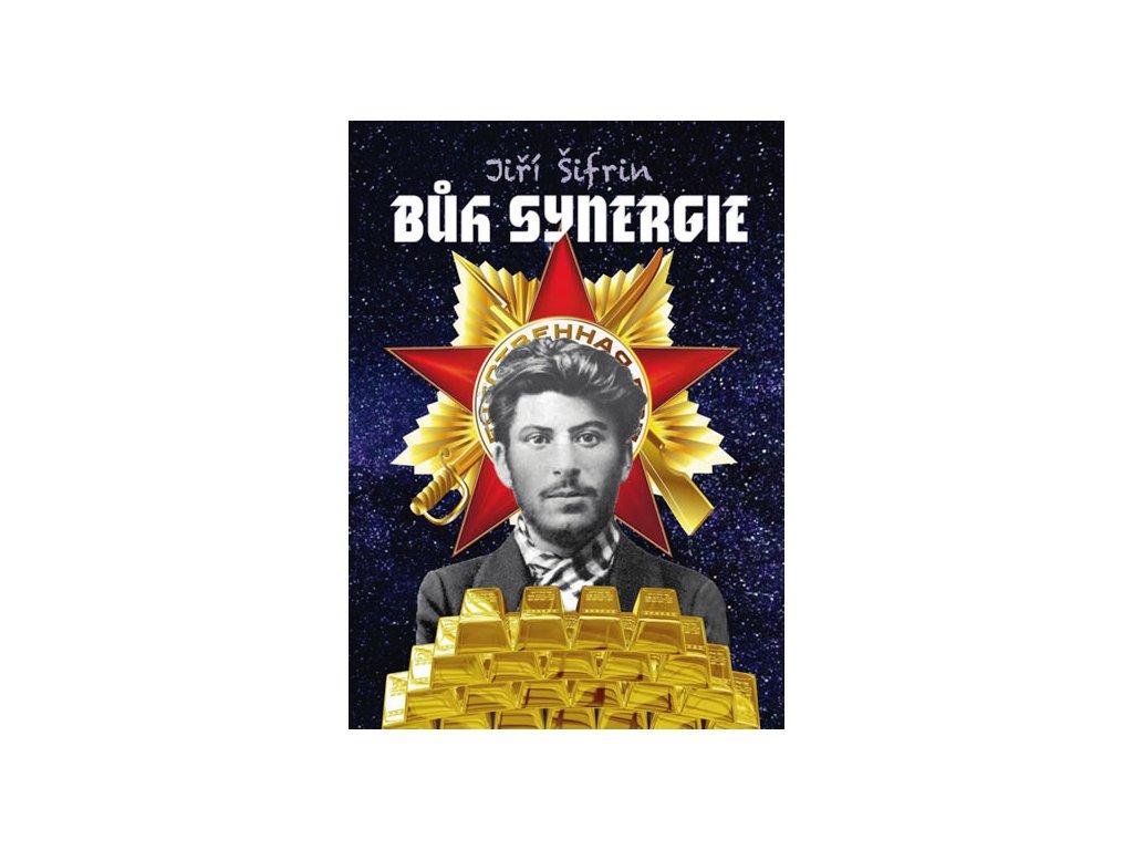 book BookSynerigie big