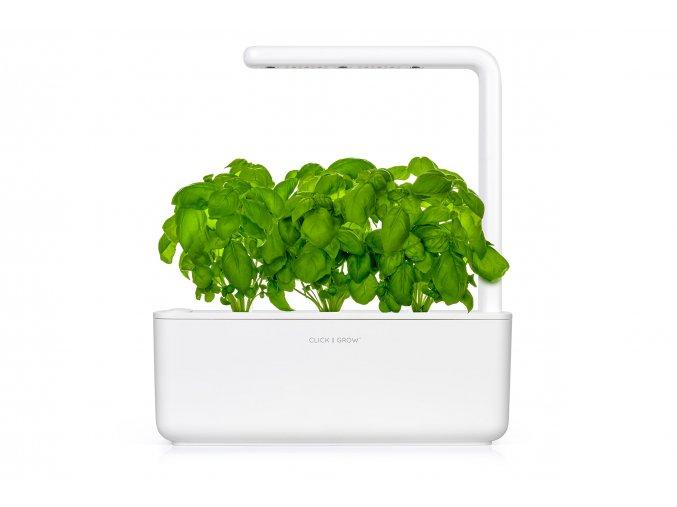 click and grow bily 3