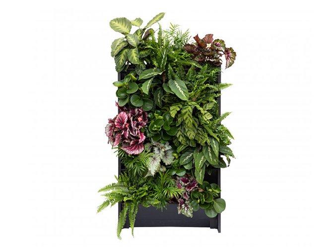 plant box vertikalni zahradka 1