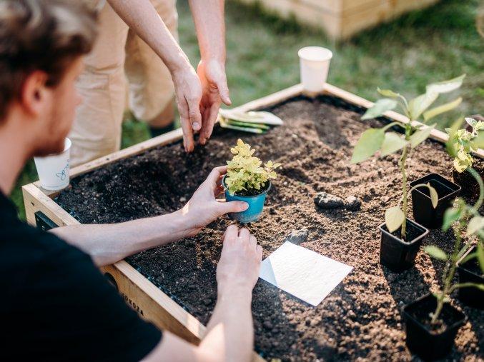 Příručka komunitního zahradníka s konzultací