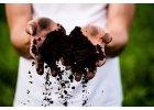 Prírodné hnojivá