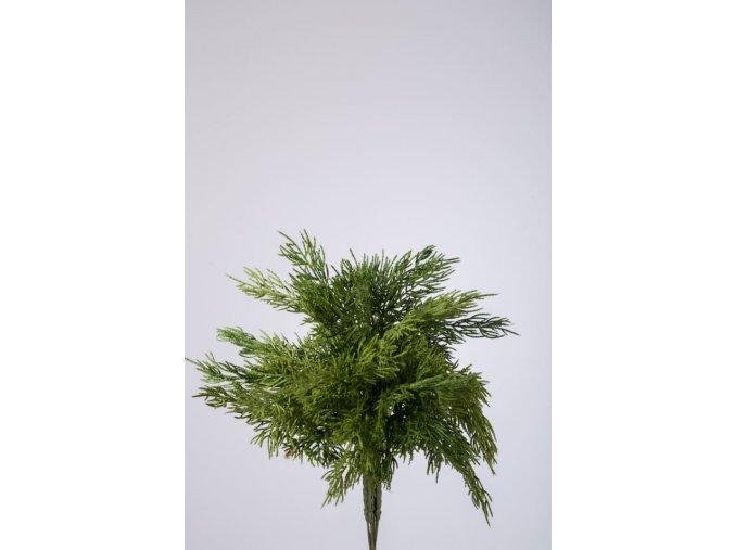 Colours Green Pine x9 Bundle 31cm 850270
