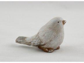 Set sedících zimních ptáčků