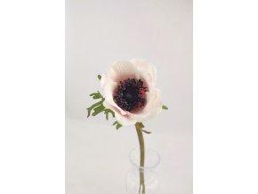 eshop tom anemone lila