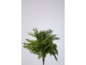 Colours Green Pine x9 Bundle 31cm 850270