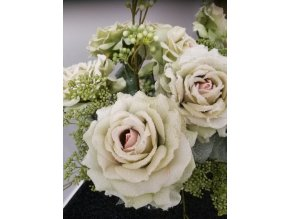 Růže omrzlá zelená 67 cm