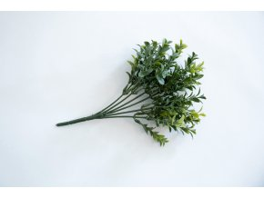 Buxus svazek 25 cm