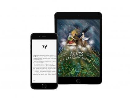 Agnes a Zakázaná hora (e-kniha)
