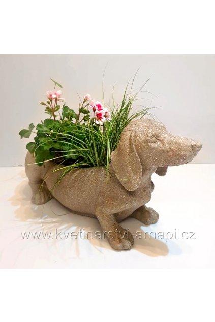 hrnkove kvetiny keramicky pes kvetinarstvi arnapi