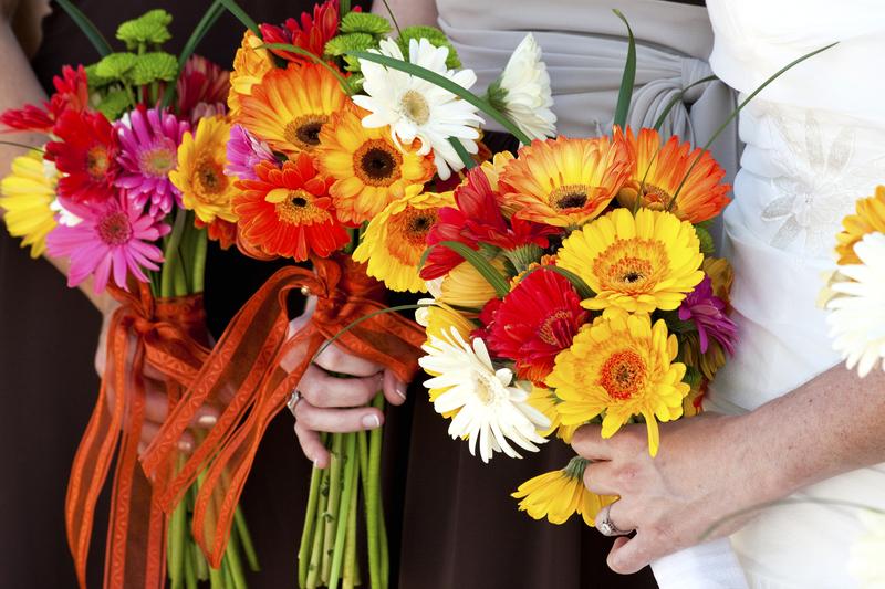 Květiny Miroslava Gelnarová