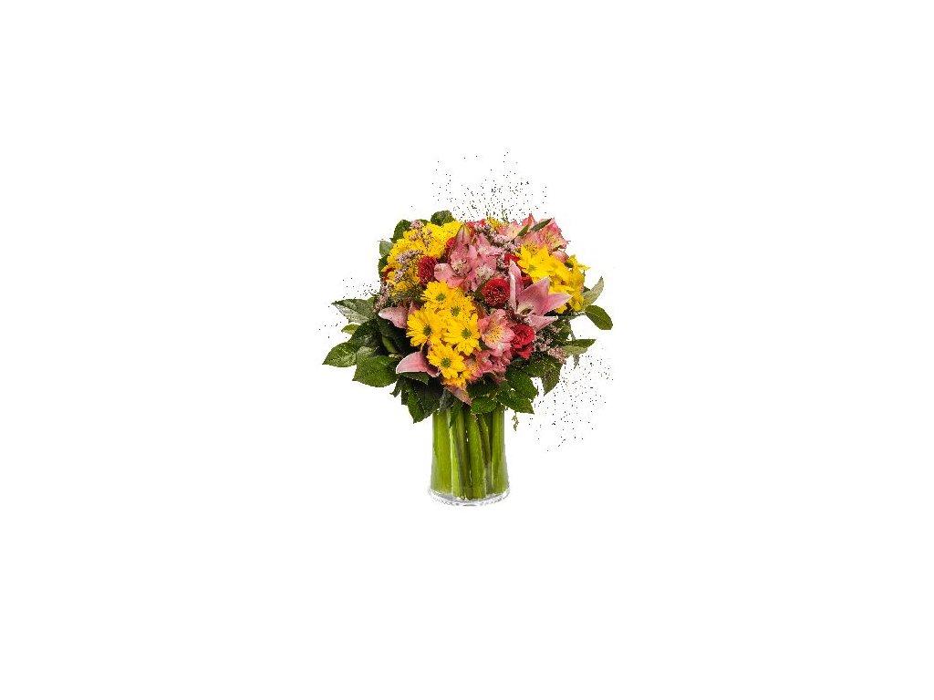 Květiny Gelnarová Květina7