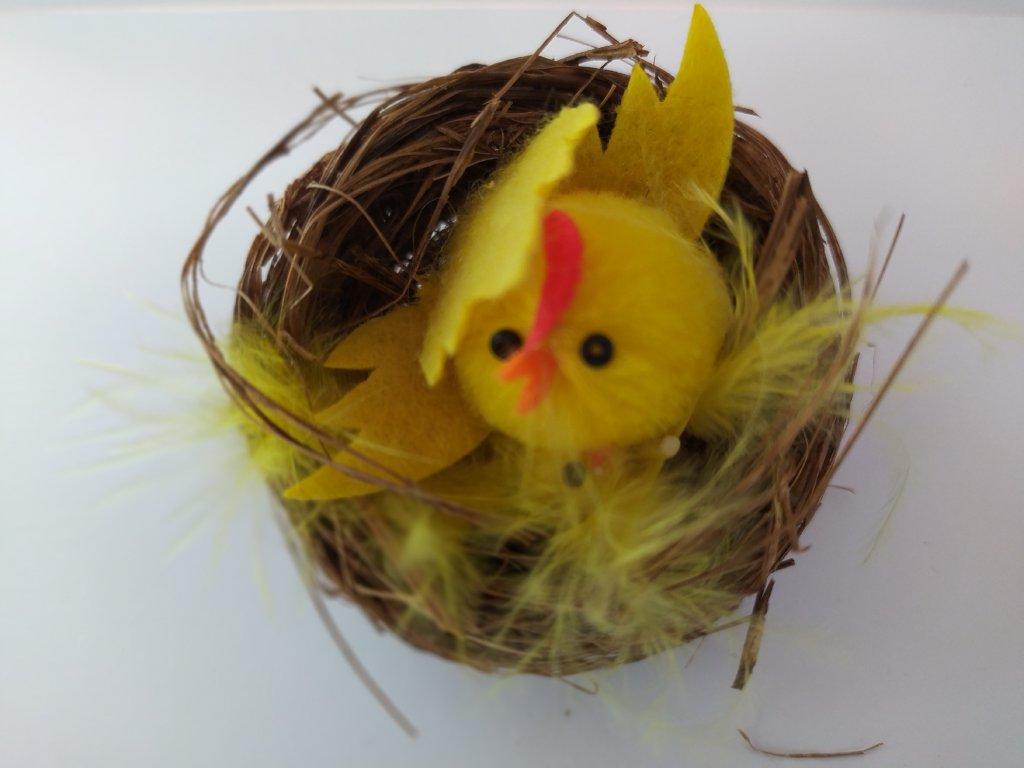 Kuřátka v hnízdě